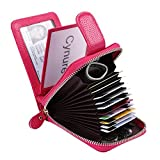 Women's 16 Slots Leather Card Holder Case zipper Around Compact Accordion ID Wallet, Rose KB10