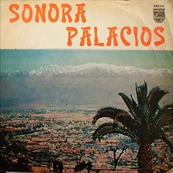Sonora Palacios, Vol. 2