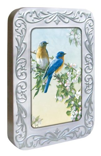 Tree-Free Greetings Noteables Notecards In Reusable Embossed Tin, 12 Card Assortment, Recycled, 4 x 6 Inches, Bluebird Branch, Multi Color (76026)