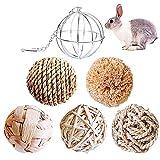 Keweni Juguetes para Masticar Conejito y Juguetes Alimentadores de Acero Inoxidable, para Animales Pequeños/Conejos/Cobayas, Juguetes para Conejos para Masticar Pelota de Pasto