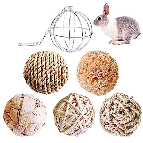 Keweni Kaubälle Kauspielzeug und Edelstahl Feeder Spielzeug für Kleintiere/Kaninchen/Meerschweinchen, Hasen Spielzeug Kauspielzeug Grasball