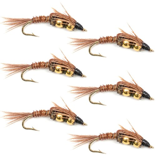 Double Bead Pheasant Tail Nymph Fly Fishing Flies Trout and Bass Wet Fly Pattern 6 Flies Hook Size 14