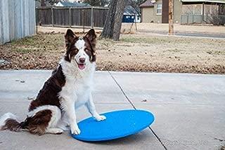 Dog Agility Equipment Wobble Board 22