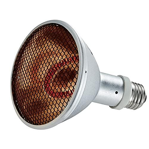 best basking light for bearded dragon, How to Choose the Best basking light for bearded dragon (For a Happy Habitat),