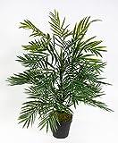 Palmenbusch / Zimmerpalme 60cm im Topf GA Kunstpflanzen Kunstpalmen künstliche Blumen Pflanzen Palme Dekopalme im Topf