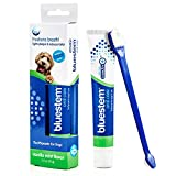 Best Dog Toothpastes - Dog Toothbrush and Toothpaste : Vanilla Mint Flavor Review