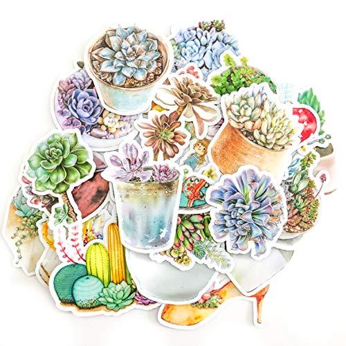 Navy Peony Watercolor Terrarium en Succulent Decals | Kleine Waterdichte Stickers voor Laptops, Skateboards en Telefoonhoesjes | Leuke Stickers voor Scrapbooking, Dagboek, Planners en Journals (25 stuks)