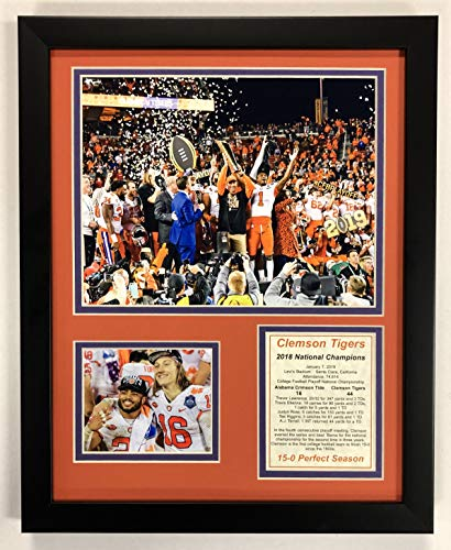 Clemson Tigers NCAA Double Matted 8x10 Photograph Team Logo