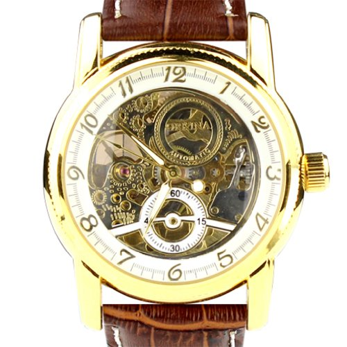 Orkina Mens Golden Case Transparent Mechanical Dial Brown Leather Strap Wrist Watch