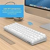 QinWenYan Tastiera da Gioco USB Wired Keyboard BT3.0 Dual Mode 61 Tasti Meccanici retroilluminazione Monocromatica Nera (Blu Switch) per Il Gioco (Colore : White, Size : One Size)