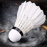 Best Badminton Shuttlecocks - Arya Enterprises Feather Badminton Shuttlecocks (White) - Pack Review