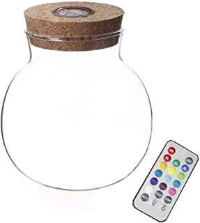 Danmu Glass Marimo Terrarium Opening Orb Terrarium with Colorful LED Light Cork and Remote Control(Dia. 13.5cm / 5.31