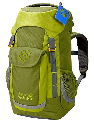 Jack Wolfskin Kinder Kids Explorer Wandern Outdoor Trekking Rucksack, Green Tea, ONE Size