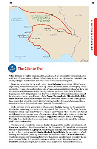Lonely Planet Naples, Pompeii & the Amalfi Coast 6 (Regional Guide) - 51xvHQhGIfL. SL500