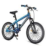 DJYD Kinder-Mountainbikes, High-Carbon Stahl Hardtail Anti-Rutsch-Fahrrad, Doppelscheibenbremse Mountain Trail Bike, Junge Mädchen Alpine Fahrrad, Blau, 20 Inches FDWFN