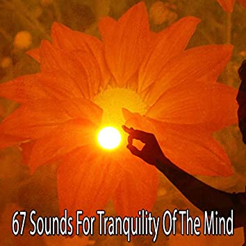 67 Sounds for Tranquility of the Mind