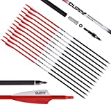 LWANO Carbon Arrow Archery 30inch Hunting Target...