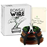 Leaves and Soul Tree Training Wire Kit - 5 Rolls (160ft) Aluminum Alloy Bonsai Plant Training Wire | Wire Cutter | Canvas Storage Bag - Bonsai Accessories for Beginners & Professionals