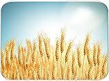 CONICIXI Alfombrilla de Secado de Platos Blue Crop Golden Wheat Field y Sunny Day File Pan de cereal de cebada amarilla Cocina Almohadilla de Microfibra Seca plega Lavable a máquina 45.7x60.9cm