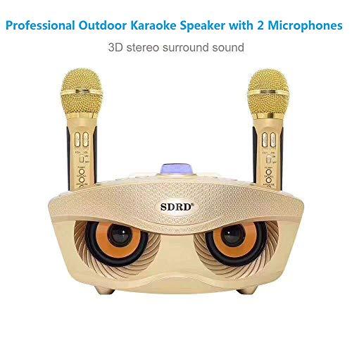 SD 306 Profesional Wireless Micrófono dual Bluetooth Altavoz Inalámbrico Karaoke al aire...
