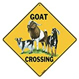 "Goat gifts ""goat crossing"" sign"