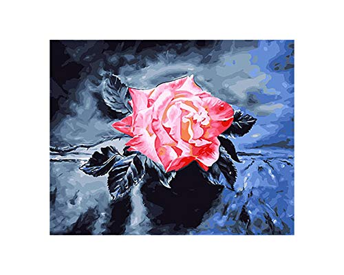 Life-Center-Store Pictures Flower DIY Painting by Numbers Canvas Oil Painting Painting and Calligraphy Home Decor for Living Room Wall Art,DIY Frame 40x50cm,GX26126
