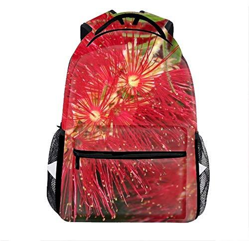Lightweight Backpack for Outdoor, Bottlebrush Callistemon Basic Water Resistant Casual Daypack for...