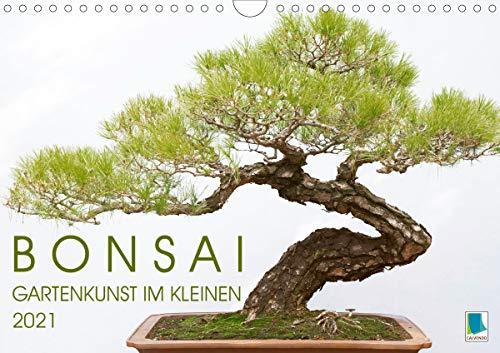 Bonsai: Gartenkunst im Kleinen (Wandkalender 2021 DIN A4 quer)