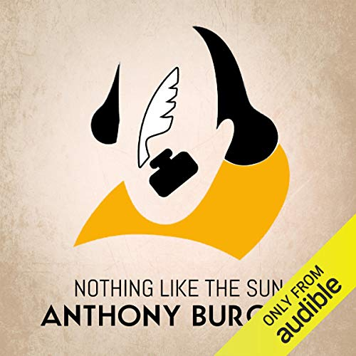Nothing Like the Sun cover art