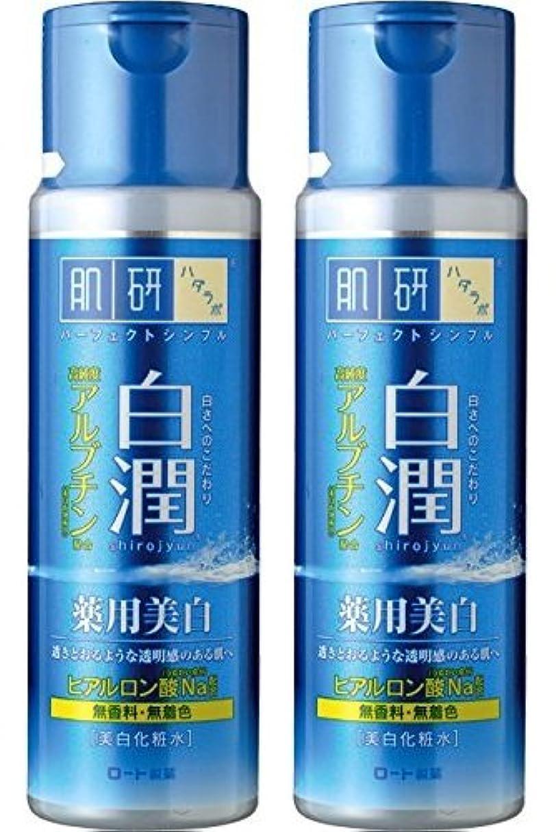 排泄物本会議安西【まとめ買い】肌研 白潤 薬用美白化粧水 170mL ×2セット