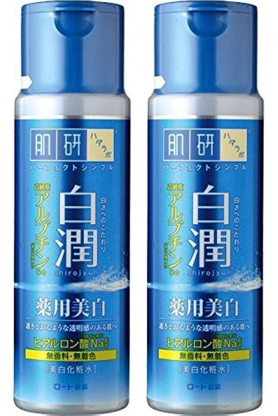 細断モディッシュ委員会【まとめ買い】肌研 白潤 薬用美白化粧水 170mL ×2セット