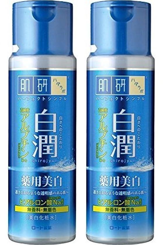 灰ステレオタイプクリーク【まとめ買い】肌研 白潤 薬用美白化粧水 170mL ×2セット
