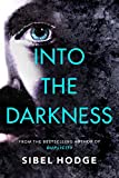 Into the Darkness (A Detective Carter Thriller)