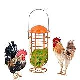 lanermoon Chicken Foraging Coop Toys for Hens,Hanging Iron Feeding Treat Box,Parrot Bird Vegetable Veggie Feeder Toys (Orange)