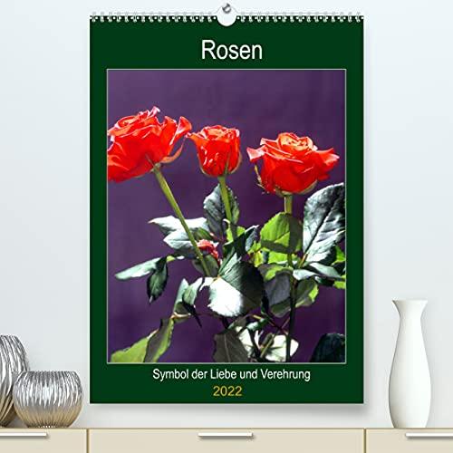Rosen - Symbol der Liebe und Verehrung...