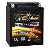 Weize YTX14AH-BS High Performance - Maintenance Free-Sealed AGM ATV Motorcycle Battery For Polaris Sportsman 500 570 Trail Blazer 250 Ranger 400 500 Suzuki King Quad 300 QuadRunner 250