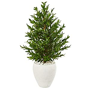 Silk Flower Arrangements Nearly Natural 3.5-Ft. Olive Cone Topiary Artificial White Planter UV Resistant (Indoor/Outdoor) Silk Trees Green