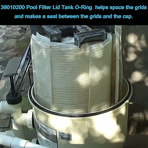 39010200 Tank Clamp O-Ring Replacement Pool and Spa D. E. Filter, Fits Pentair (CCP 520/420/320) Clean