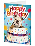 English Bull Dog emerges from Giant Birthday Cake – Birthday Card