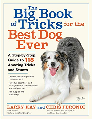 Kay, L: Big Book of Tricks for the Best Dog Ever