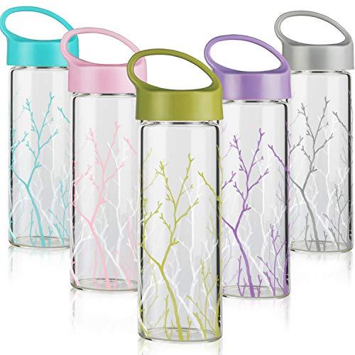 FCSDETAIL Glas Wasserflasche 450 ml (5er Pack), BPA-freie Glas-Trinkflasche mit Auslaufsicherem PP-Deckel