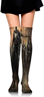 King With Armor Leading His Army In War Evil And Good Ancient City Women's Fashion Over The Knee High Socks (60cm)