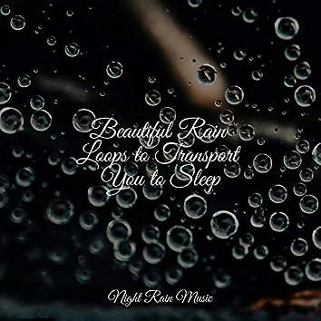 Beautiful Rain Loops to Transport You to Sleep