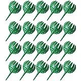 Nirmon Cubierta el Soporte del Contenedor de la Cesta de la Caja del Fertilizante para el Hogar la Flor de la Planta de los BonsáIs - C