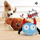 Namsan Hundespielzeug Bounce Interaktives Spielzeug für Hunde mit Zwei Attraktiven