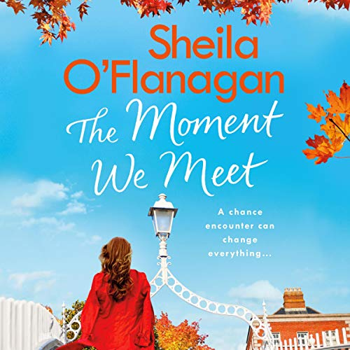 The Moment We Meet audiobook cover art