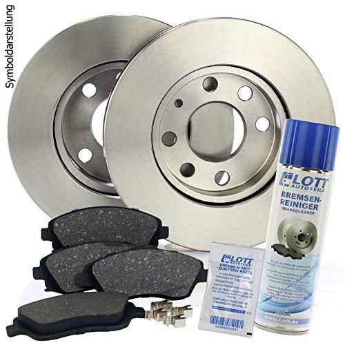 Bremsscheiben Ø313mm + Bremsbeläge Bremsklötze vorne Vorderachse + 500ml Bremsenreiniger