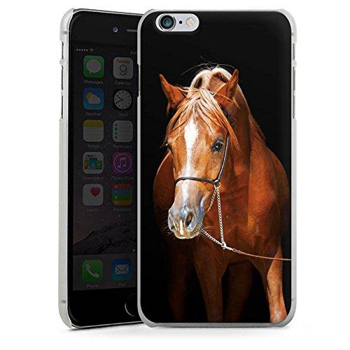 DeinDesign Hülle kompatibel mit Apple iPhone 6s Plus Handyhülle Case Pferd Horse Stute Hengst