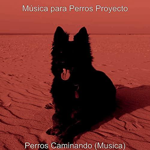 Música para Perros Proyecto