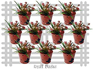 Royal baskets Round 1 Butterfly Railing Planter/Plant pots (Orange, Pack of 10)…
